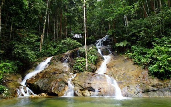 Hutan Lipur Kanching - Women Online Magazine