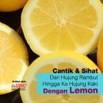Wajib Tahu! 13 Kebaikan Lemon