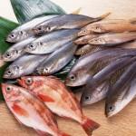 Betul Ke Makanan Laut Tidak Elok Dimakan Oleh Para Ibu Mengandung?