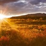 Kebaikan & Keburukan Matahari Pagi Yang Perlu Anda Tahu