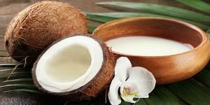 Santan kelapa - woman online magazine