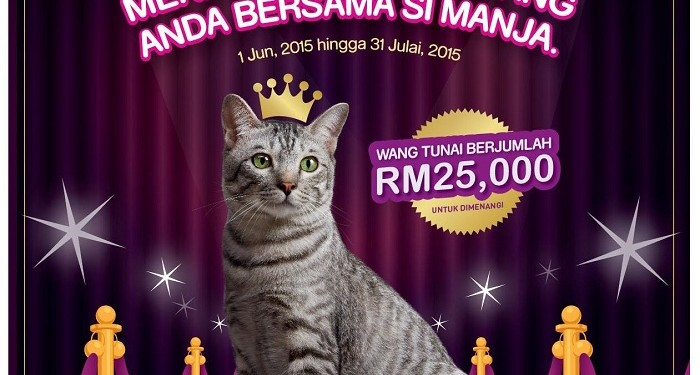 Whiskas Makanan Kucing 2