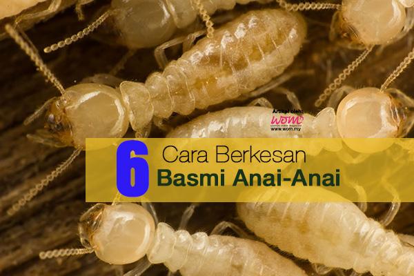anai-anai - women online magazine