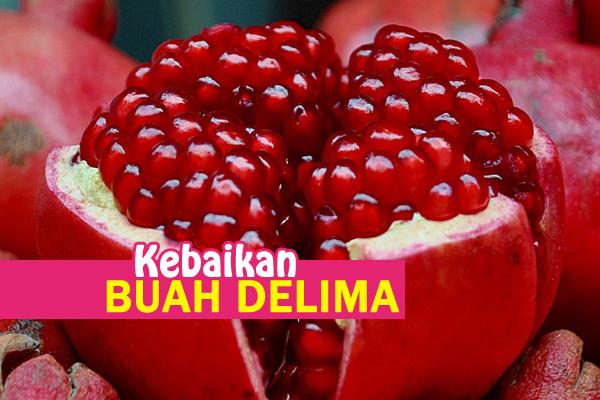 kebaikan buah delima - women online magazine