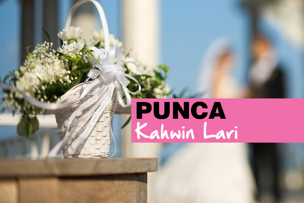 punca kahwin lari - women online magazine