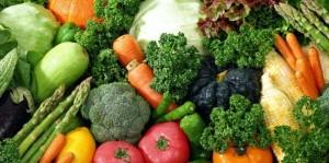 sayur organik -oman online magazine
