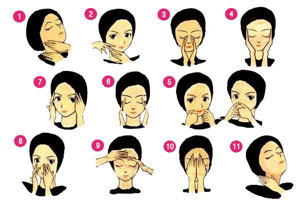 urutan wajah