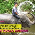 Jalan-Jalan Ke Kuala Gandah, Tengok Gajah!