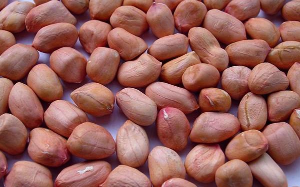 khasiat kacang tanah - women online magazine